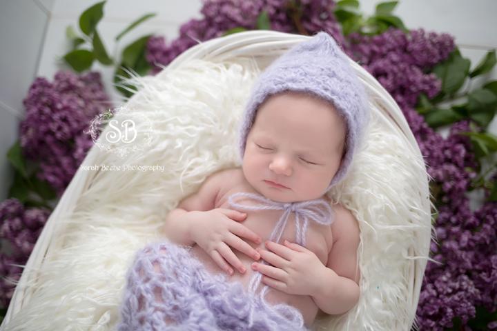 Adorable Spring Baby in Kelowna SBP Studio 2015