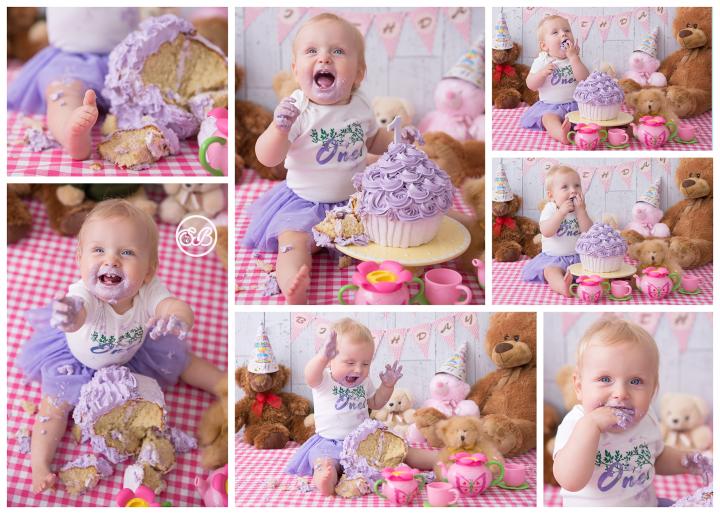 Adorable Teddy Bear Picnic Cake Smash