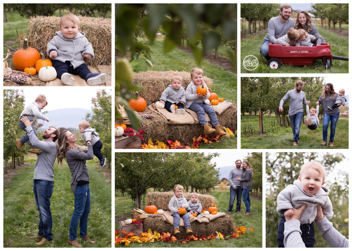 Autumn in a Pear Orchard {Beautiful Family of Four}