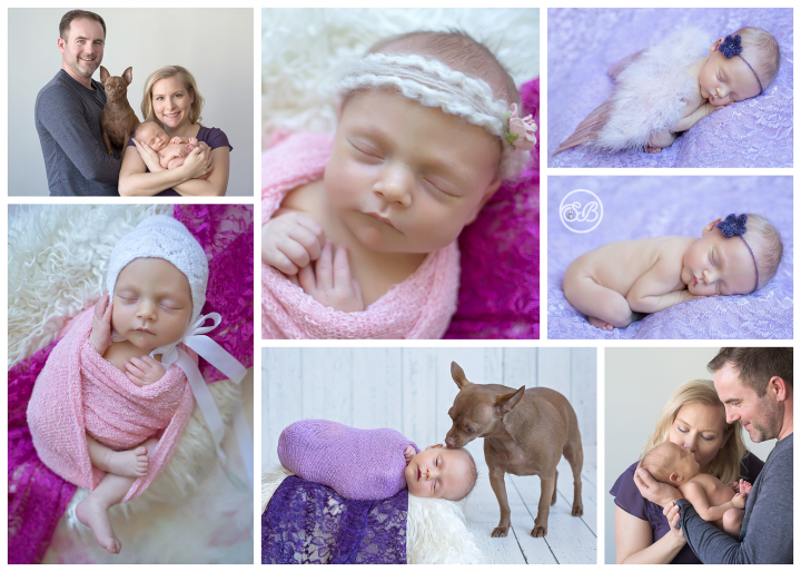 Beautiful Baby Girl Snuggled in SBP Studio {Furry Friend Included}