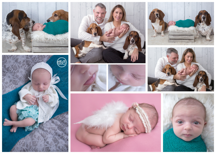 Baby Puppies and Family {So much LOVE}