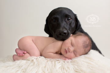 Puppy Love and Newborn Snuggles at the SBP Studio February 2015
