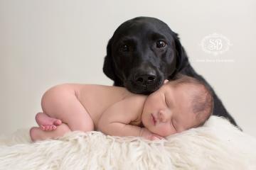 Puppy Love and Newborn Snuggles at the SBP Studio February 2015