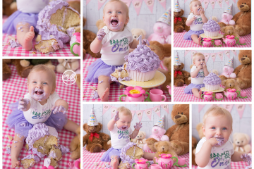 Adorable Teddy Bear Picnic Cake Smash