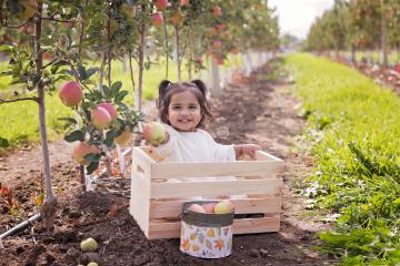 Happy Autumn! {Apple Orchard Cutie}