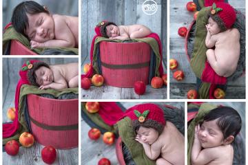 Okanagan Apple Baby {Milestone Photographer}